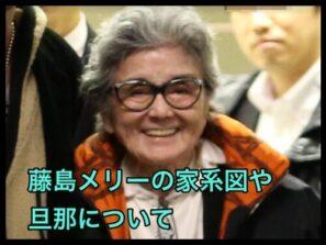 藤島メリー泰子